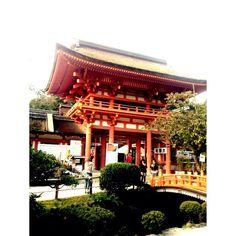 良い季節ですね    こんにちは。  富永です。  僕は秋になると京都に行きたくなります。  早起きしてぷら〜っと行ってきました〜  庭を見ながらランチしてみたり、   神社をぶらぶらしたり、  今回は、こんな感じでした〜  これから紅葉とかも綺麗なので楽しみです。  秋の京都を楽しみたいと思います。