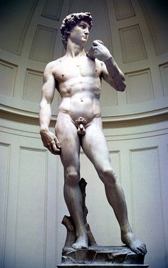 El David de Miquel Àngel en la Galleria dell'Accademia - Florencia.  http://bit.ly/1u4fU9Z