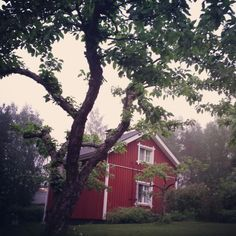 Summer night and my little red home. <3