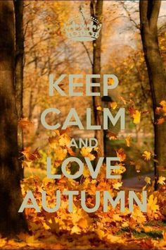 Repinned: Keep calm and love autumn