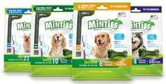 Free and Cheap: FREE SAMPLE OF MINTIES