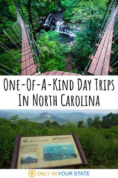 If you're looking for unique adventures in North Carolina, you can find them here. From treetop zipline courses to hidden swimming holes, there's something you'll love.   Family Friendly   Summer Fun   Quarry   Vineyards   Best Attractions   Zoos   Gardens   State Parks   Lakes   Things To Do   Staycation Vacation Places, Vacation Destinations, Vacation Trips, Vacation Spots, Places To Travel, Vacation Packages, Travel Route, Dream Vacations, Vacation Ideas