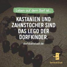 #dorfstattstadt - http://ift.tt/2cZ30tV - #dorfkindmoment #dorfstattstadt