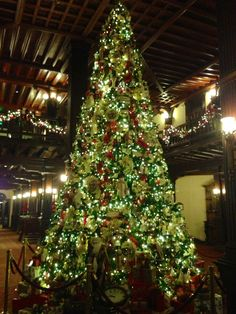 Tree in the Hotel Del's lobby