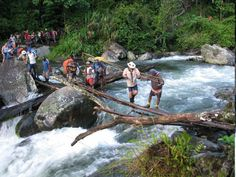 Fit for Kokoda! Adventure Treks, Day Hike, Amazing Adventures, Papua New Guinea, Bushcraft, Wonderful Time, Trekking, Design Projects, Places Ive Been