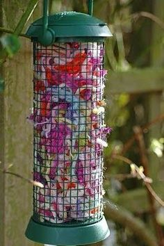 Summer Project: take scraps of yarn and fill a bird feeder.