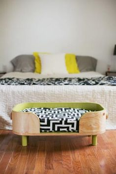 modern design ideas for dogs beds