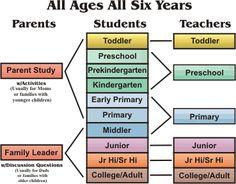 Our next Bible curriculum?