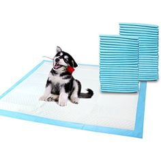 Dog Pee Pads,LAPOND Pet Training Puppy Pads 50 Count,Dog Diaper with Quick Drying Surface,45 x 60 CM * You can get additional details at the image link. (This is an affiliate link) #Dogs
