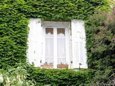 Saint-Paul-de-Vence, Alpes-Maritimes, Provence-Alpes-Côte d'Azur, France,  janelas, fenêtres, windows,  foto de Véva Nogueira