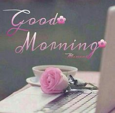 Good morning miss ditto! I hope you slept well and are having an amazing morning! Good Morning Coffee, Good Morning Picture, Good Morning Friends, Good Morning Good Night, Good Morning Wishes, Good Morning Quotes, Morning Sayings, Funny Morning, Morning Texts