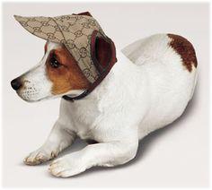 Hat for Donner