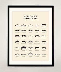 A field guide to Typestaches poster