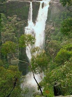 Amazing Waterfalls Around The World -1 - Carrington Falls, New South Wales, Australia