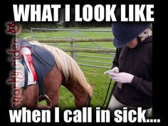 When I will grow up, this iz how my life wull look like. I will always say I am sick just fir spending time with horses and riding