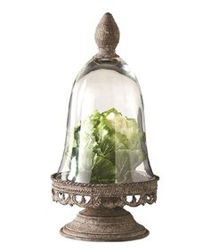 Loving this Antique Glass Dome Pedestal on #zulily! #zulilyfinds
