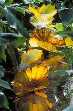 Chihuly at Kew Gardens  TEMPERATE HOUSE PERSIAN POND, 2005... even better in person!