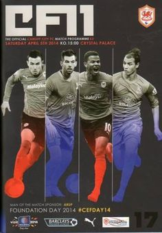 Cardiff City - Barclays Premier League
