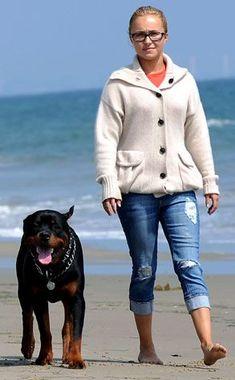 American actress, model, singer, and activist. Hayden Panettiere's rottweiler