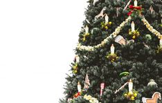 These Christmas tree decorating ideas are so STUNNING and will catch all of your holiday party guests by surprise. They're easy to copy too! Christmas Gift Pictures, Family Christmas Gifts, Christmas Cards, Traditional Christmas Food, Christmas Eve Traditions, Tree Shop, Christmas Wallpaper, Merry Xmas, Christmas Tree Decorations