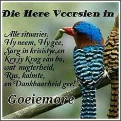Evening Greetings, Afrikaanse Quotes, Goeie Nag, Goeie More, Day Wishes, Morning Greeting, Good Morning, Poems, Christianity