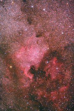 Myriads of star
