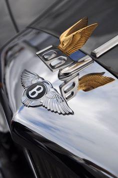 Bentley bonnet detail