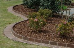 Red brick landscaping border pathway. Love the brick color and easy to mow/edge.