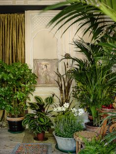 Indoor Garden, Indoor Plants, Home And Garden, Turbulence Deco, Filming Locations, Back To Nature, Plant Decor, Vintage Home Decor, Houseplants