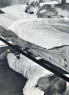 Un garçon partage son lit avec son meilleur ami