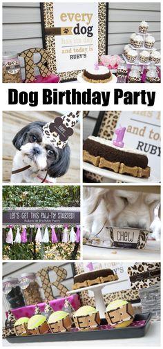 Yes, I celebrate my dog's birthday!uk/yes-celebrate-dog-birthday-no-im-not-crazy/ Puppy Birthday Parties, Puppy Party, Dog Birthday, Birthday Gifts, Leopard Dog, Animal Birthday, Animal Party, Dog Care, Dog Mom