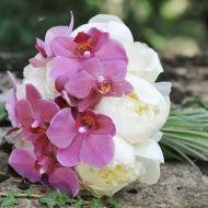 Orchid Breeze Bridal Bouquet - Orchid Breeze Bridal Bouquet > View Full-Size I...   Breeze, Orchid, Aud, Purchased, Bouquet   B