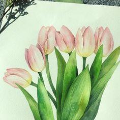여리여리 핑크 #튤립  수강생 상시모집^^ 화요일/수요일 오전 두드려보세요~~ #전주혁신도시수채화 #전주혁신도시성인미술 #취미미술 Watercolor Paintings, Watercolours, Flower Art, Art Drawings, Instagram, Awesome, Crafts, Nature, Plants