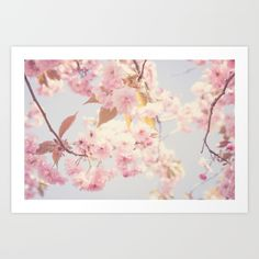 Collect your choice of gallery quality Giclée, or fine art prints custom trimmed by hand in a variety of sizes with a white border for framing. Cherry Blossom Art, Spring Time, Fine Art Prints, Tapestry, Gallery, Frame, Artwork, Pink, Photos