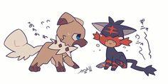 Rockruff y Litten Dog Pokemon, Pokemon Ships, Pokemon Fan, Cute Pokemon, Pikachu, Pokemon Stuff, Tulip Colors, Mudkip, Pokemon Special