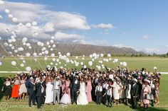An Aleit Wedding at Val de Vie Polo Estate in the Cape Winelands. Elegant, Stylish, Classic - Flowers by Liezl Kotze Floral Art. Wedding Planners, Cape Town, South Africa, Dolores Park, Weddings, Floral, Flowers, Travel, Viajes