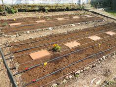Garden Hoe, Water Garden, Water Wise, Seed Starting, Sprinkler, Irrigation, Hydroponics, Homesteading, Planting Flowers