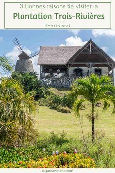La plantation Trois-Rivières se trouve à Sainte-Luce dans le sud de la Martinique, là où se trouvent les plages les plus prisées. C'est une halte idéale avant d'aller lézarder sur la plage des Salines ou de défier les rouleaux du Diamant. Trois Rivieres, Plantation, Cabin, House Styles, Travel, Wraps, Beaches, Diamond, Trips