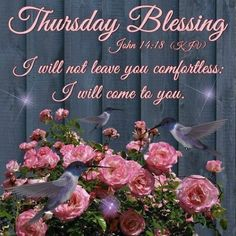 Thursday Greetings, Happy Thursday Quotes, Good Morning Thursday, Morning Greetings Quotes, Good Morning Happy, Thankful Thursday, Thursday Prayer, Thursday Images, Blessed Wednesday