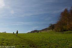 Burgweid, Solothurner Jura - #wandern #Schweiz #Jura