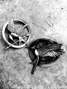 Hunger Games pin- Catching Fire pin- now all we need is the Mockingjay (movie) pin