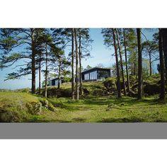 Nye Risøya venter på deg. Ledige hytter mellom 1.-15. Juni. Løp og lei! www.risoya.no