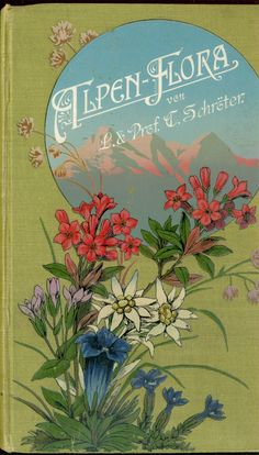 Alpen Flora von L. & Prof. C. Schroter [gorgeous cover of colorful wildflowers in the foreground and mountains in the background]