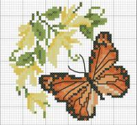 Gallery.ru / Фото #44 - бабочки - irisha-ira