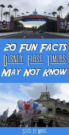 """""""If you had to offer a first time visitor just one tip before they arrived, what would it be?"""" This list is packed with 20 things that we wished someone would have told us before our first trip to Walt Disney World! (In no particular order, although the first one does involve the possibility of …"""