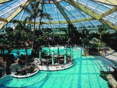 1000 Images About Dream Short Break At Center Parcs Longleat Forest On Pinterest Forests