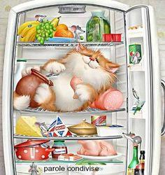 Il frigorifero é un chiaro esempio che ciò che conta, è quello che c'è dentro. web
