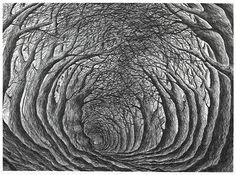 Exhibition: Radiohead artist Stanley Donwood produces a sensational Soho show Radiohead, Gravure Illustration, Illustration Art, Stanley Donwood, Polychromos, Ap Studio Art, English Artists, Wood Engraving, Illustrations