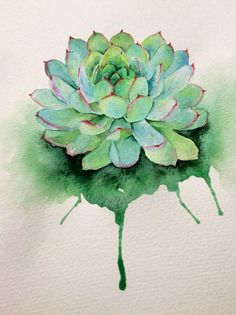 Pin by jammie dykstra on suculent plants акварельная живопис Watercolor Succulents, Watercolor Flowers, Painting & Drawing, Watercolour Painting, Watercolors, Watercolor Tattoos, Colorful Succulents, Easy Watercolor, Art Graphique