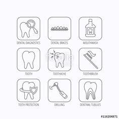 ベクター: Tooth, dental braces and mouthwash icons.点